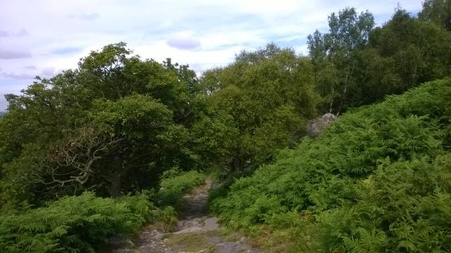 View photo 2