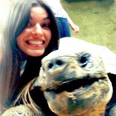 rachael tortoise