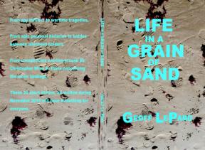 life-in-a-grain-final