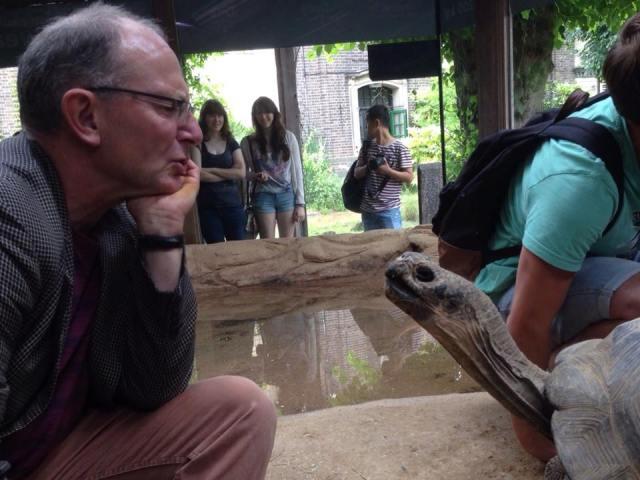 me and tortoise