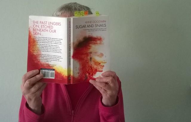 anne goodwin book tour