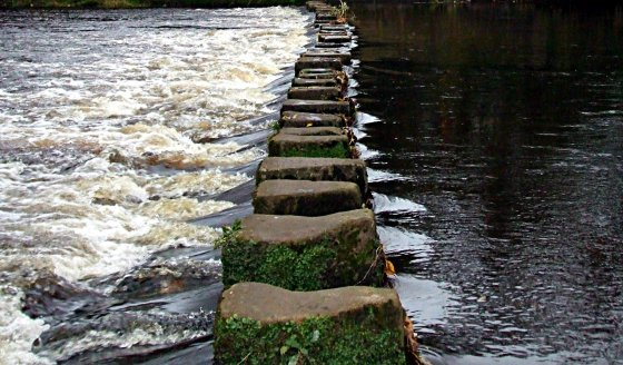 sue vincent stepping stones