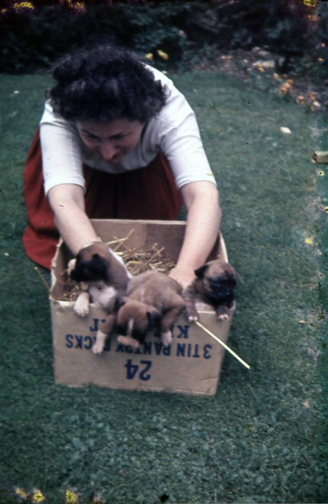 04-box-036