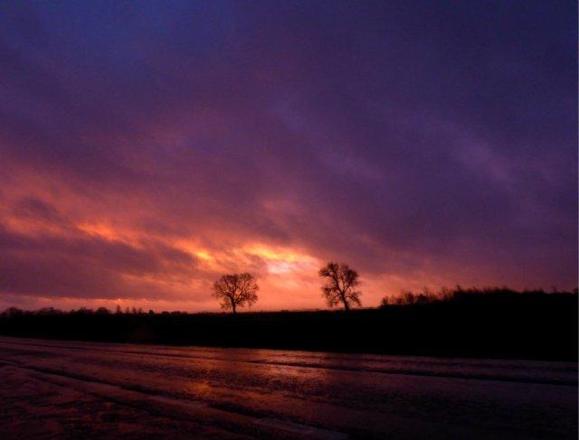 sue-dark-dawn